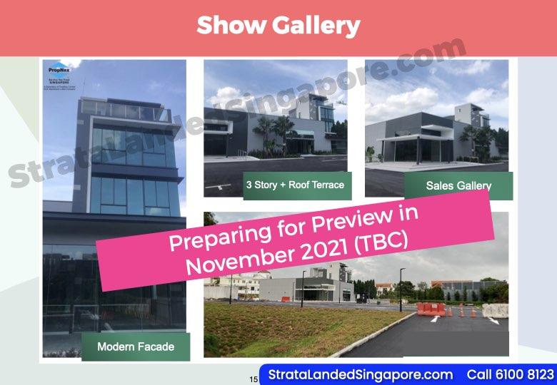 Belgravia Ace Show Gallery